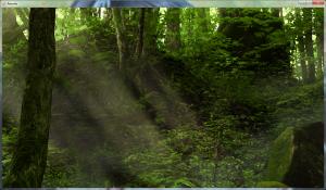 Rewrite - Forest BG
